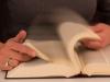 bladeren-in-boek