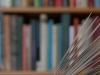 boek-voor-boekenkast-1